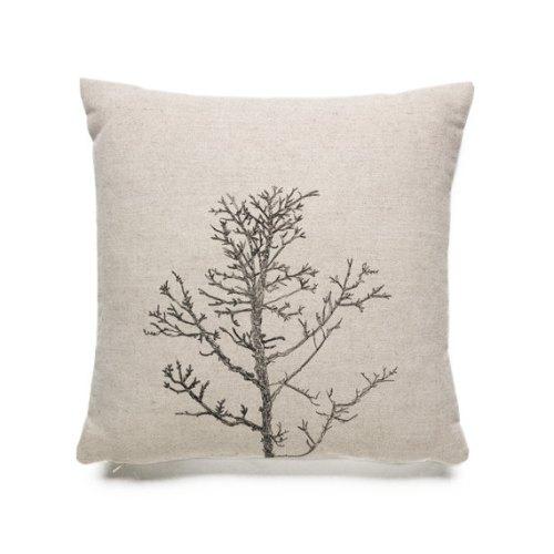 Maxemilia winter tree