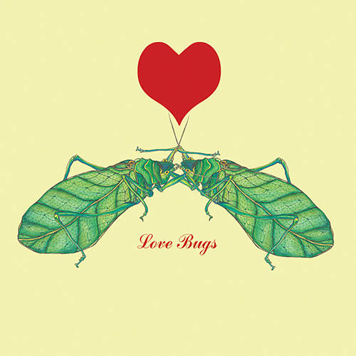 original_love_bugs_card