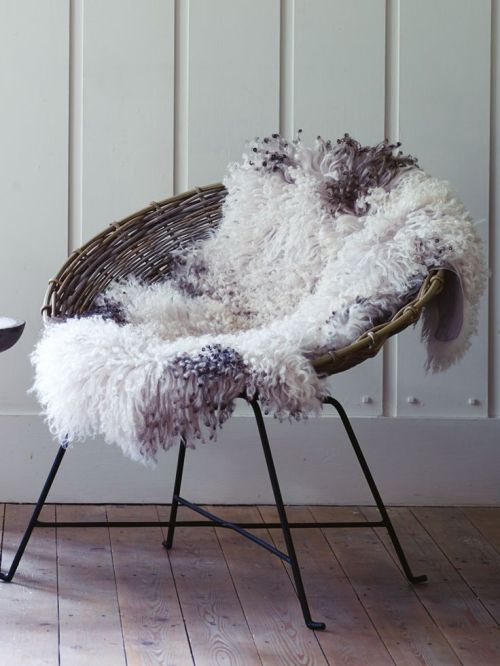 Cox and Cox curly sheepskin