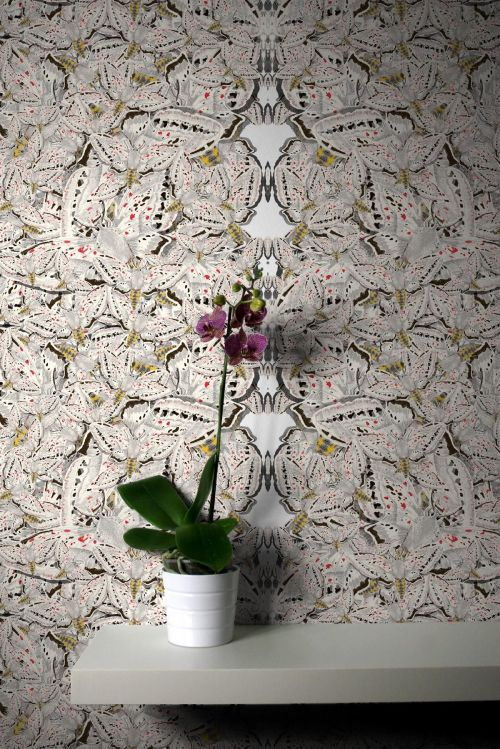 Timorous Beasties white moth wallpaper