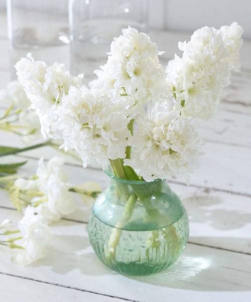 An Angel at my Table White Hyacinth bunch