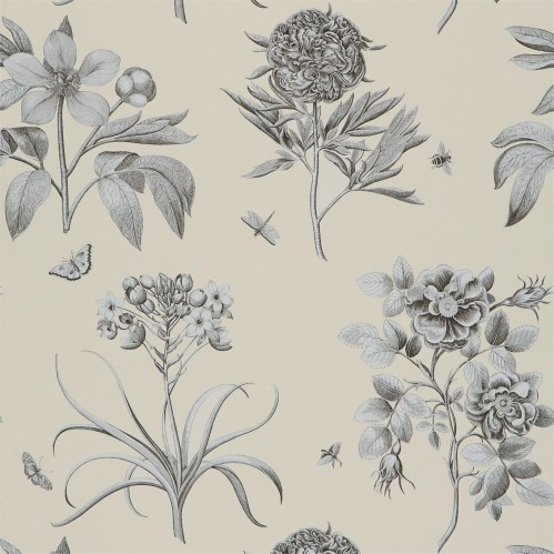 Sanderson Etchings and Roses