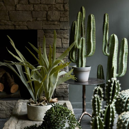 Artificial plant selection from abigail ahern for Artificial plants for interior decoration