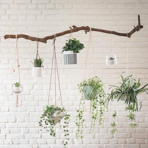 accessories. Black Bedroom Furniture Sets. Home Design Ideas
